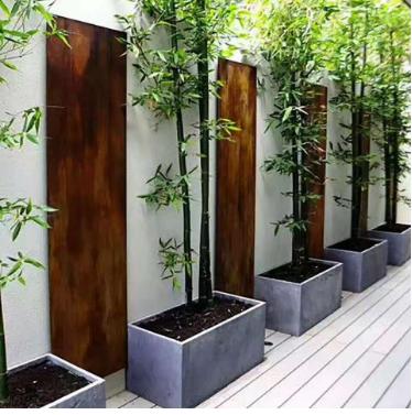 福田别墅办公室绿植管理制度品质保障