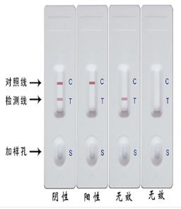 东莞稳定大肠杆菌检测仪公司解决方案